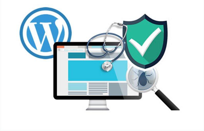 WordPress Sitelerde Zararlı Yazılım ile Virüslerin Tespiti ve Temizlenmesi